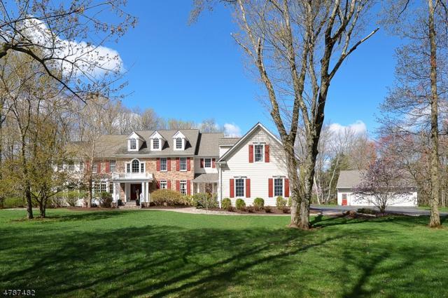23 Birchwood Dr, Montgomery Twp., NJ 08540 (MLS #3456221) :: SR Real Estate Group