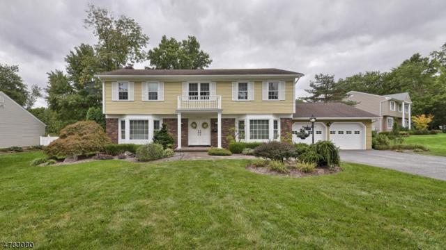 17 Veteri Pl, Wayne Twp., NJ 07470 (MLS #3456245) :: SR Real Estate Group