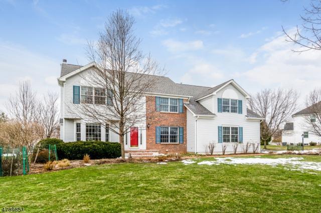 3 Quaker Road, Readington Twp., NJ 08822 (MLS #3457027) :: SR Real Estate Group