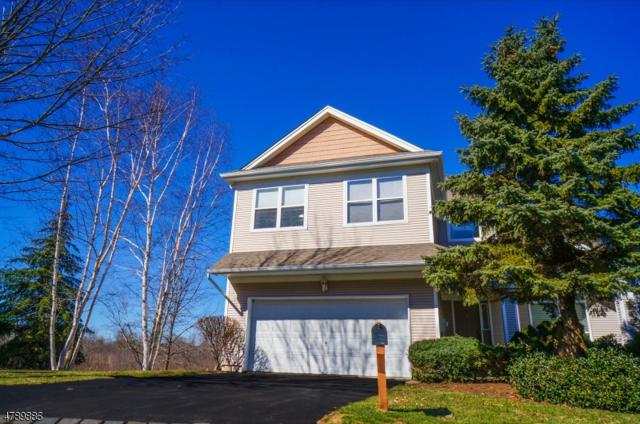 74 Tannery Hill Dr, Hardyston Twp., NJ 07419 (MLS #3457337) :: SR Real Estate Group