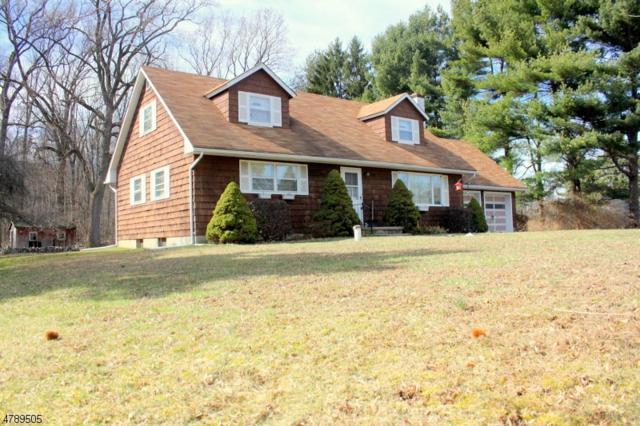 613 Brass Castle Rd, White Twp., NJ 07823 (MLS #3457401) :: Jason Freeby Group at Keller Williams Real Estate