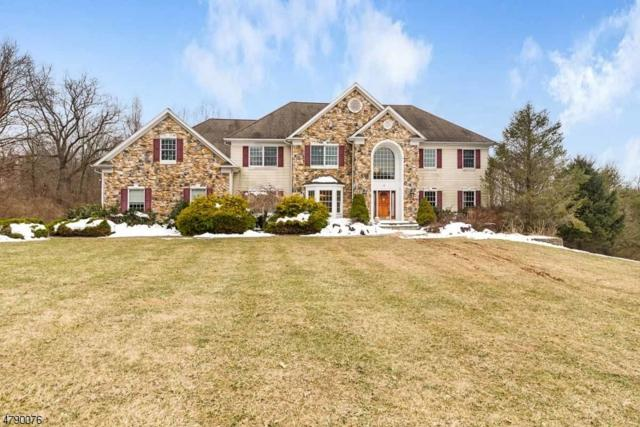 4 Hunter Ln, Alexandria Twp., NJ 08848 (MLS #3457478) :: SR Real Estate Group