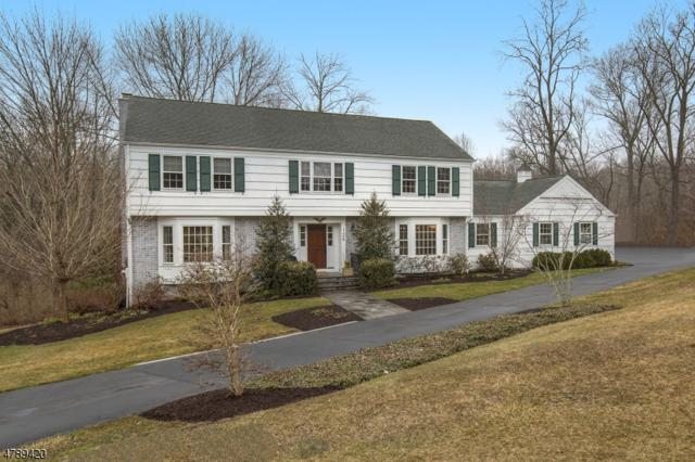 126 Lees Hill Rd, Harding Twp., NJ 07920 (MLS #3457567) :: SR Real Estate Group