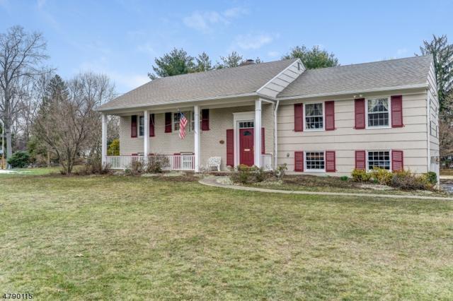 23 Dorset Ln, Millburn Twp., NJ 07078 (MLS #3457712) :: SR Real Estate Group