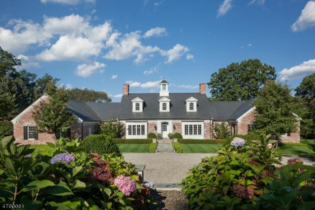 52 Chapin Rd, Bernardsville Boro, NJ 07924 (MLS #3457748) :: SR Real Estate Group