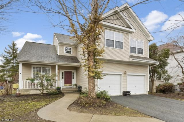 3 Rolling Rapids Ct, Hackettstown Town, NJ 07840 (MLS #3457906) :: SR Real Estate Group