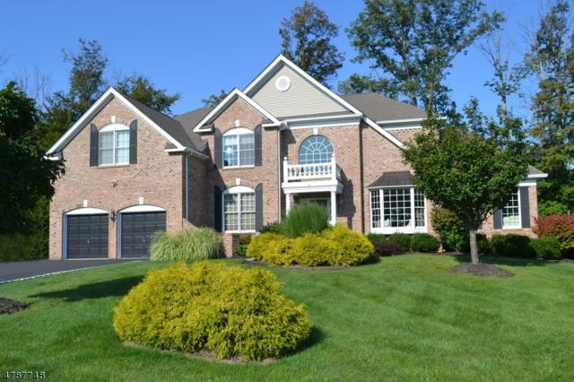 2 Fields Way, Mount Olive Twp., NJ 07828 (MLS #3457960) :: The Sue Adler Team