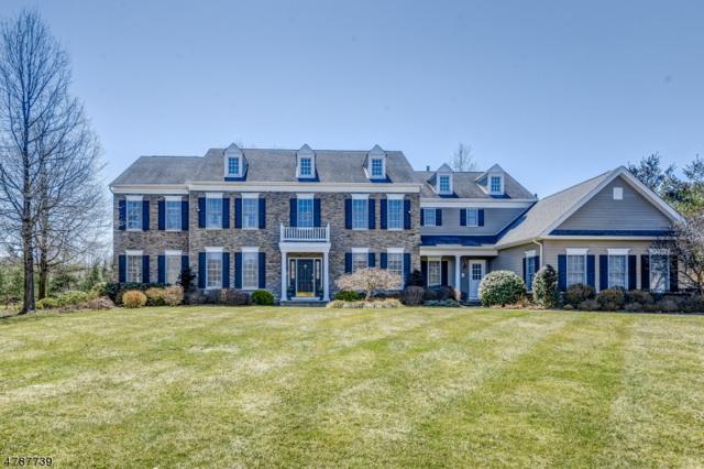 25 Squire Ct, Bernards Twp., NJ 07920 (MLS #3458236) :: SR Real Estate Group