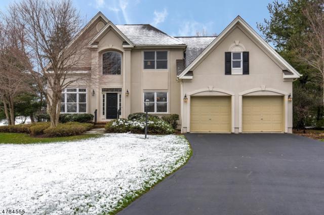 7 Tanglewood Ct, Montgomery Twp., NJ 08558 (MLS #3458254) :: SR Real Estate Group