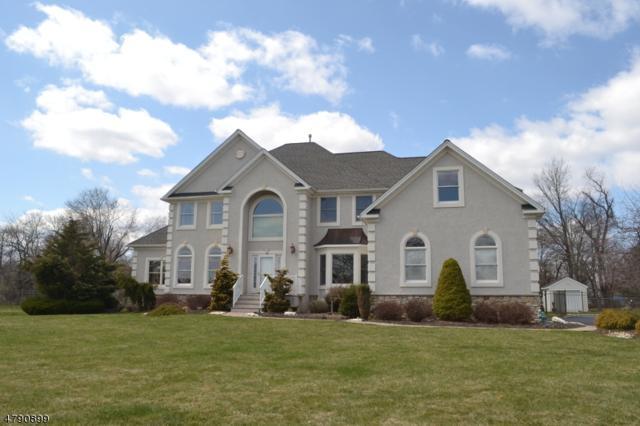 5 Steeple Dr, Hillsborough Twp., NJ 08844 (MLS #3458589) :: SR Real Estate Group