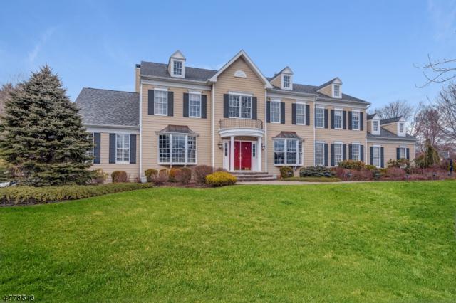 20 Squire Ct, Bernards Twp., NJ 07920 (MLS #3458770) :: SR Real Estate Group