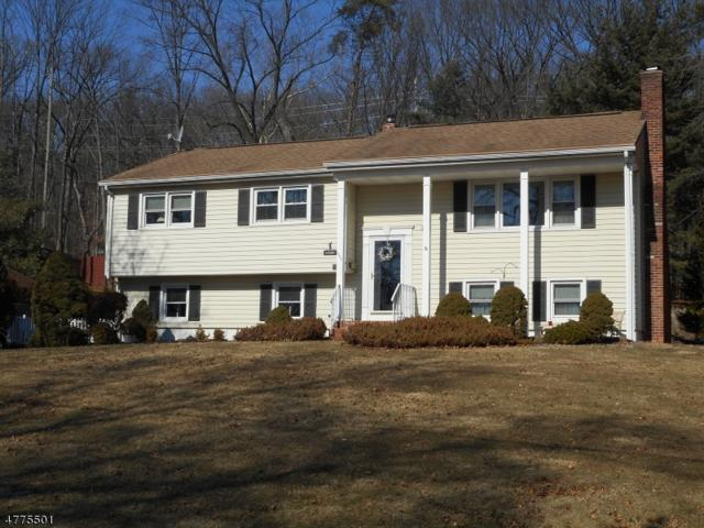 642 N Meadow Dr, Bound Brook Boro, NJ 08805 (MLS #3459408) :: The Sue Adler Team