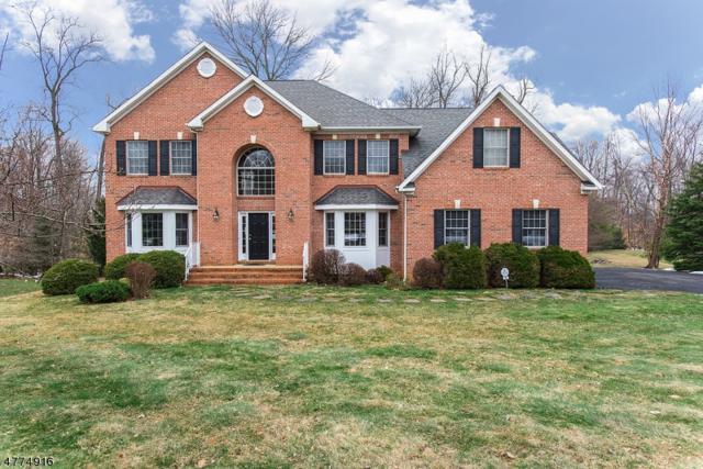 16 Schindelar Woods Way, Warren Twp., NJ 07059 (MLS #3459830) :: SR Real Estate Group