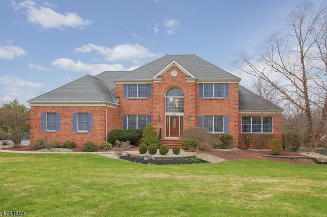 36 Horseshoe Dr, Hillsborough Twp., NJ 08844 (MLS #3459844) :: SR Real Estate Group