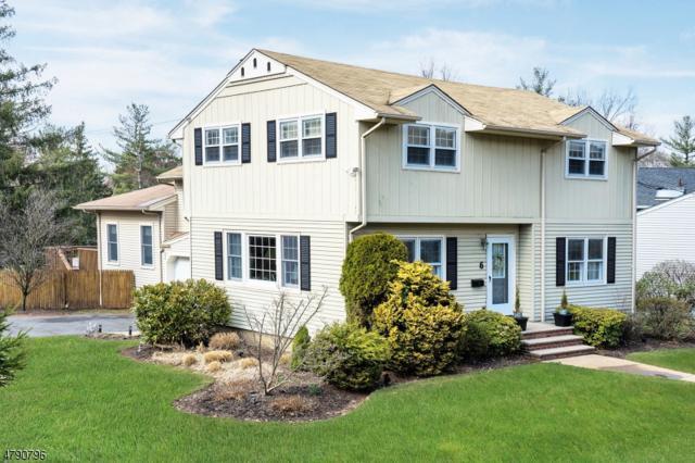 6 Chestnut Hill Dr, Berkeley Heights Twp., NJ 07974 (MLS #3459932) :: The Sue Adler Team