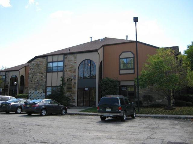 490 Schooley's Mountain, Washington Twp., NJ 07840 (MLS #3460069) :: William Raveis Baer & McIntosh