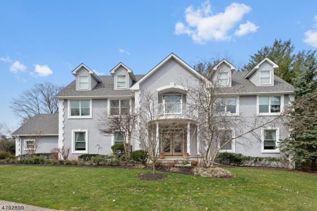 553 Wakefield Dr, Metuchen Boro, NJ 08840 (MLS #3460104) :: SR Real Estate Group