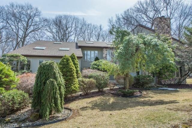 5 Pinnacle Pt, Randolph Twp., NJ 07869 (MLS #3460108) :: SR Real Estate Group