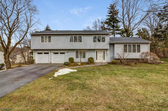 26 Badger Dr, Livingston Twp., NJ 07039 (MLS #3460421) :: SR Real Estate Group