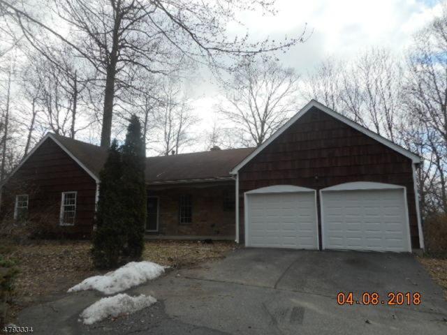 46 Sandpiper Dr, Allamuchy Twp., NJ 07840 (MLS #3460548) :: SR Real Estate Group