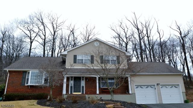 32 Joyce Dr, Roxbury Twp., NJ 07876 (MLS #3460628) :: SR Real Estate Group