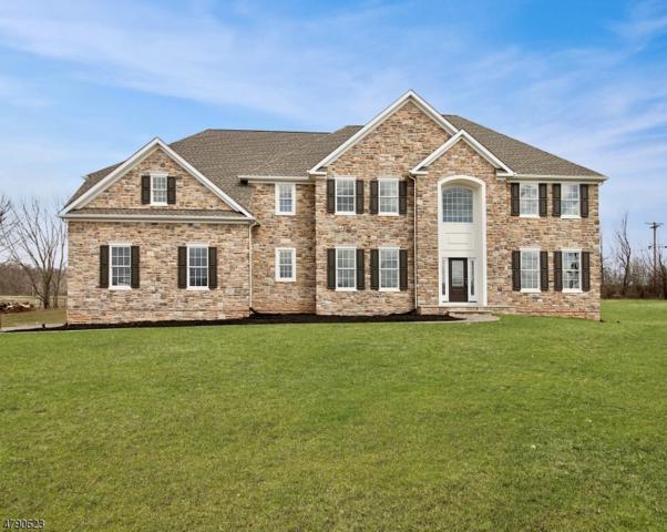6 Moonlight Trl, Raritan Twp., NJ 08822 (MLS #3460817) :: SR Real Estate Group