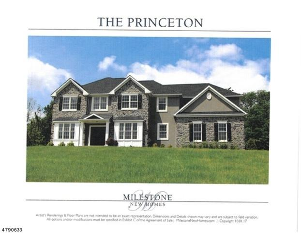 10 Moonlight Trl, Raritan Twp., NJ 08822 (MLS #3460821) :: SR Real Estate Group