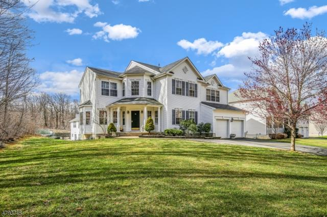 876 Ravine Rd, Jefferson Twp., NJ 07849 (MLS #3460959) :: The Sue Adler Team