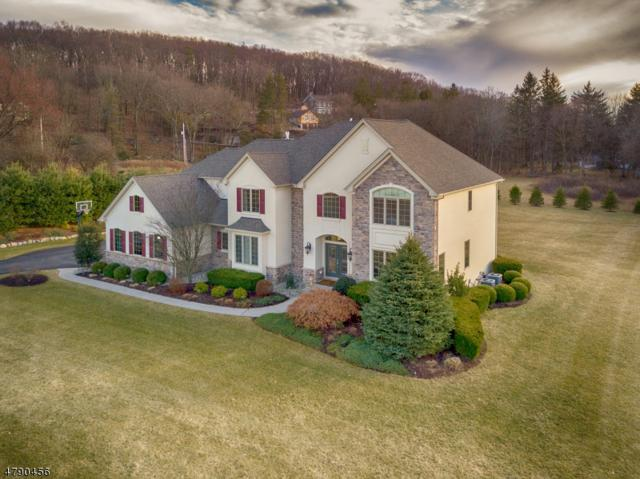 1 Philhower Court, Denville Twp., NJ 07834 (MLS #3461034) :: SR Real Estate Group