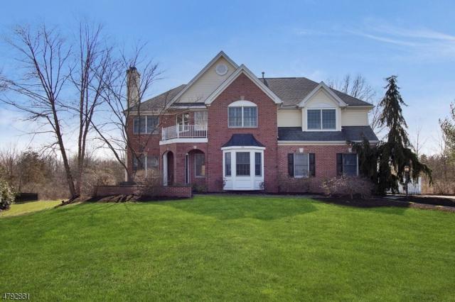 73 Shoal Creek Dr, Montgomery Twp., NJ 08558 (MLS #3461057) :: SR Real Estate Group