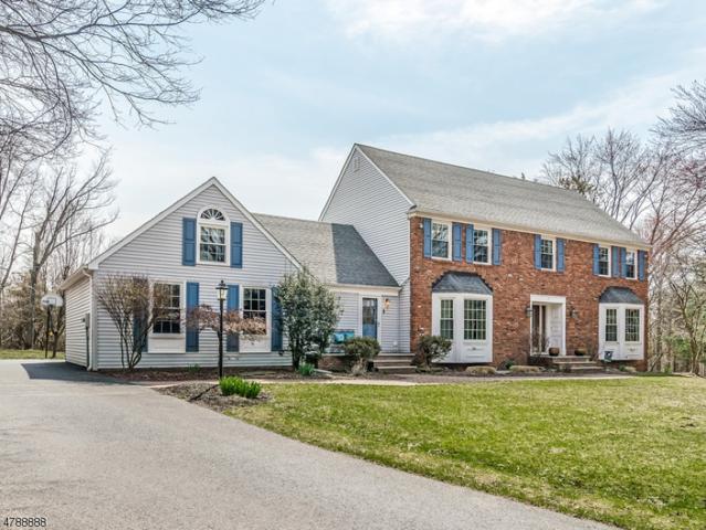 6 Windsor Ct, Clinton Twp., NJ 08801 (MLS #3461185) :: SR Real Estate Group