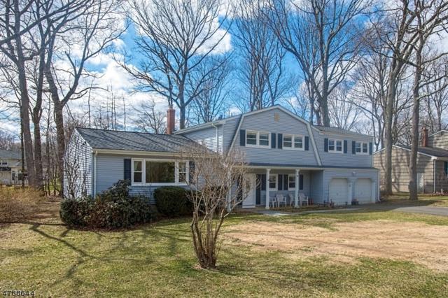 5 Chestnut Hill Rd, Randolph Twp., NJ 07869 (MLS #3461550) :: The Douglas Tucker Real Estate Team LLC