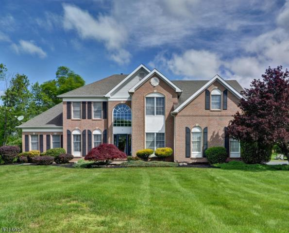 77 Southfield Dr, Montgomery Twp., NJ 08502 (MLS #3461572) :: The Sue Adler Team