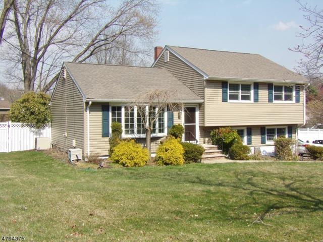 5 Comfort Ct, Randolph Twp., NJ 07869 (MLS #3461576) :: The Douglas Tucker Real Estate Team LLC