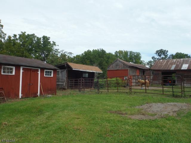 138 Wheatsworth Rd, Hardyston Twp., NJ 07419 (MLS #3461667) :: SR Real Estate Group