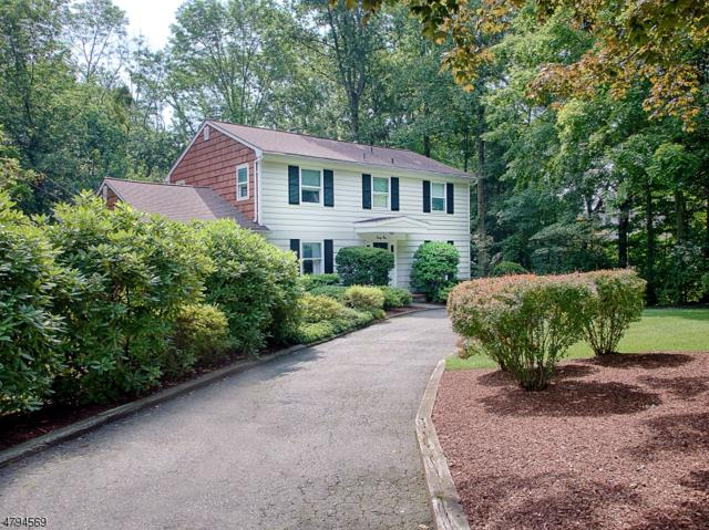 41 Wilcox Dr, Mountain Lakes Boro, NJ 07046 (MLS #3461739) :: SR Real Estate Group