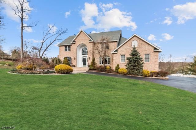 35 Barbara Dr, Randolph Twp., NJ 07869 (MLS #3461884) :: The Douglas Tucker Real Estate Team LLC