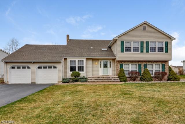 10 Eldorado Dr, Roxbury Twp., NJ 07876 (MLS #3462509) :: SR Real Estate Group
