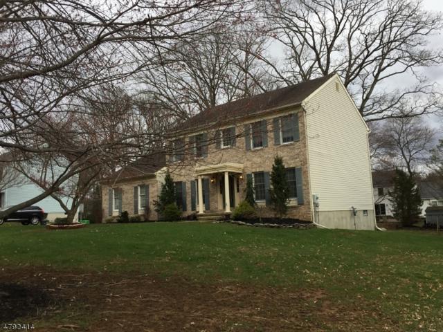 6 Merion Ln, Washington Twp., NJ 07882 (MLS #3463047) :: The Sue Adler Team