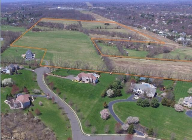 0 Winfield Ter, Branchburg Twp., NJ 08853 (MLS #3463485) :: SR Real Estate Group