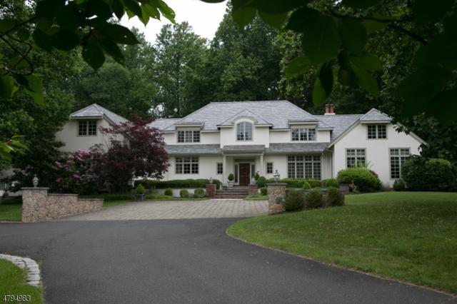 141 Dryden Rd, Bernardsville Boro, NJ 07924 (MLS #3463558) :: The Sue Adler Team