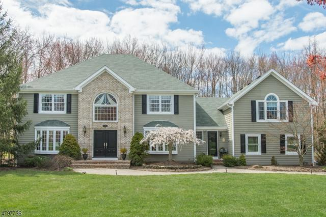 5 Vale Rd, Hanover Twp., NJ 07981 (MLS #3464682) :: The Sue Adler Team