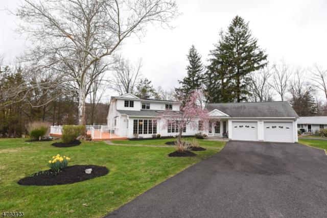 1006 Lakeview Dr, Bridgewater Twp., NJ 08807 (MLS #3464743) :: The Sue Adler Team