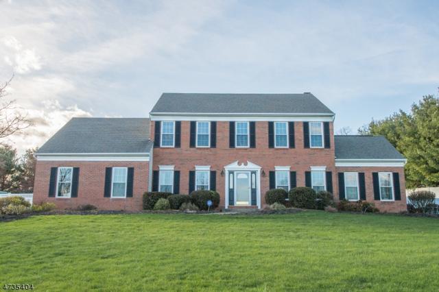 2 Tracey Ln, Mount Olive Twp., NJ 07828 (MLS #3465194) :: The Dekanski Home Selling Team