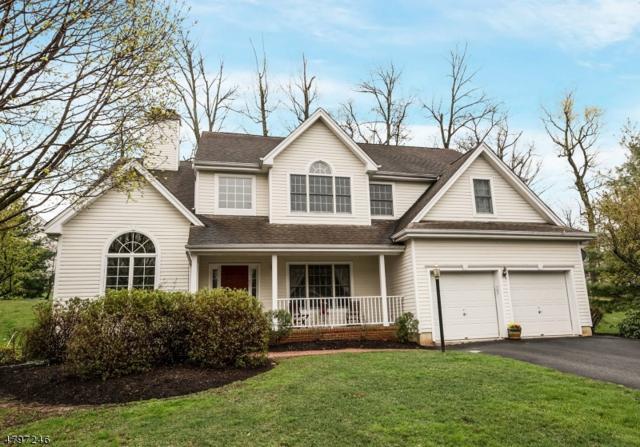 7 Jupiter Hills Ct, Montgomery Twp., NJ 08558 (MLS #3465208) :: The Dekanski Home Selling Team