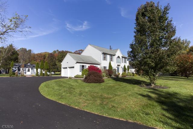 165 Berkshire Valley Rd, Roxbury Twp., NJ 07847 (MLS #3466285) :: William Raveis Baer & McIntosh