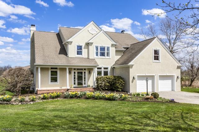 5 Saucon Valley Ct, Montgomery Twp., NJ 08558 (MLS #3466312) :: The Dekanski Home Selling Team
