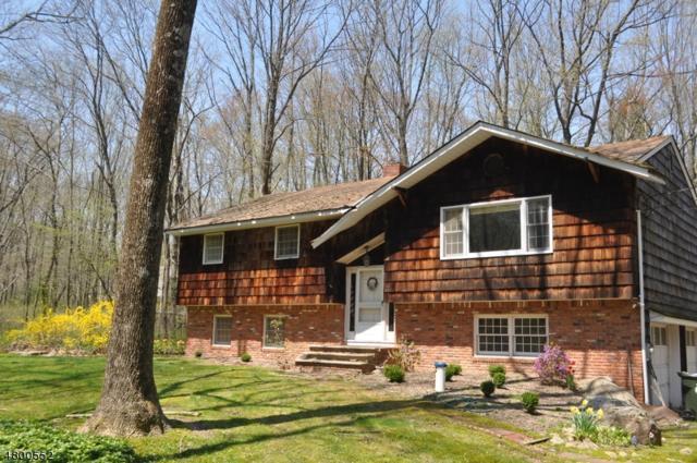 116 Lozier Rd, Mount Olive Twp., NJ 07828 (MLS #3467494) :: The Sue Adler Team
