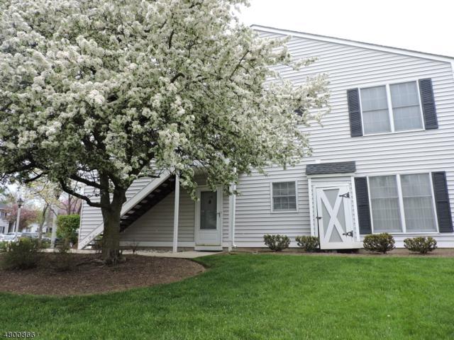 179 Milkweed Ct, Readington Twp., NJ 08887 (MLS #3467687) :: The Sue Adler Team