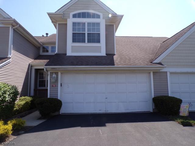 723 Brandywine Way, Lopatcong Twp., NJ 08886 (MLS #3468646) :: The Sue Adler Team